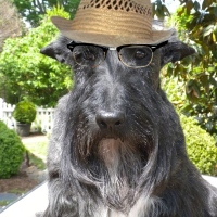 Friday's Foto Fun - A Little Old Man