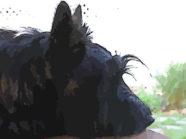A Pensive Lad art