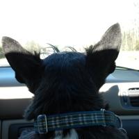 Trip Report! Smithfield VA
