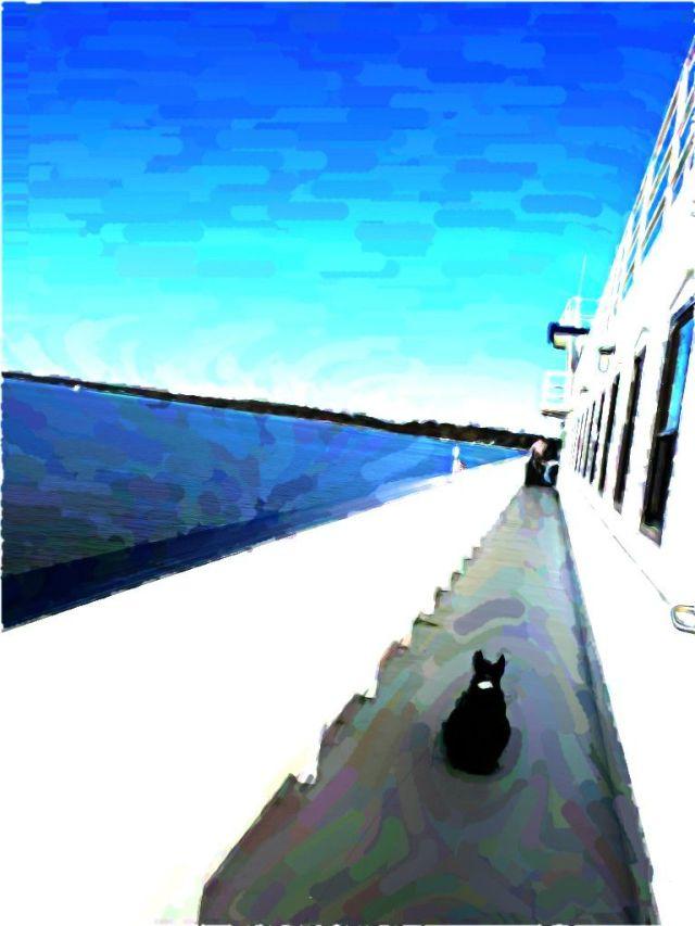 ferrytwo