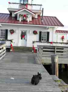 You can see places like this in Manteo.