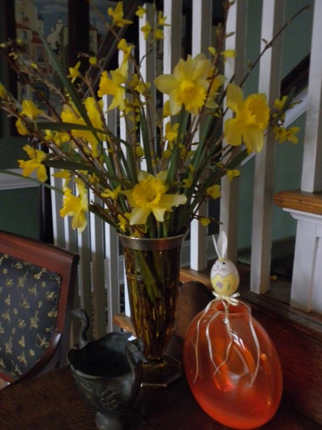 Daffodils and Mr. Easter Head