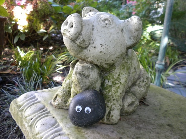 bashful with piggy