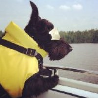 Friday's Foto Fun - Boating Chloe