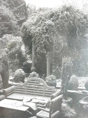 snow21014