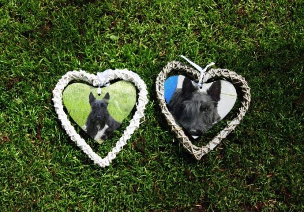 sweetheart frames
