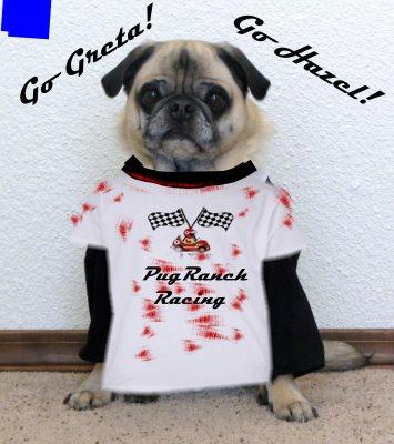 Bailey of Pug Ranch Racing