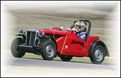 Here's Hazel in her vintage mobile in lane 3. Can she keep up the winning streak for the Pug Ranch?