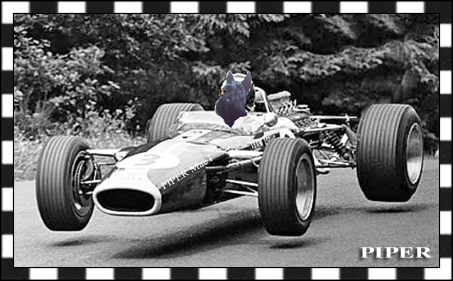 Check out Piper in this Lotus in lane 5.