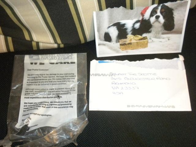 Princess Leah's letter