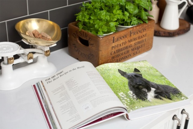 cookbook Stu