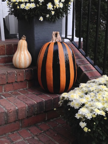 From painted pumpkins...