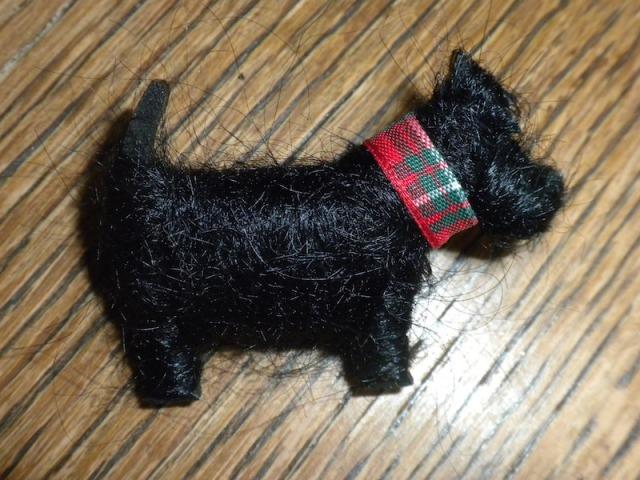 Scottie pin hairy