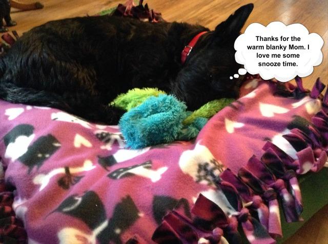 Fiona snoozy