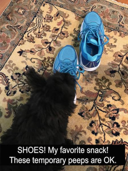 Sherlock Shoe