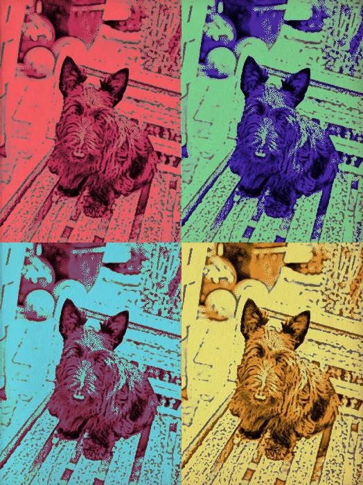 Foto Fun Warhol