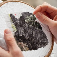 Friday's Foto Fun - Cross Stitch